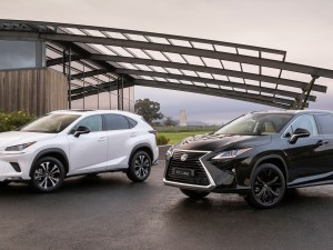 Lexus crafts two special-edition SUV models